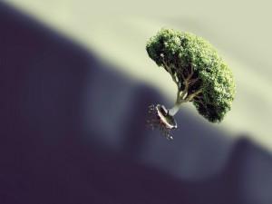 Árbol flotando por los aires
