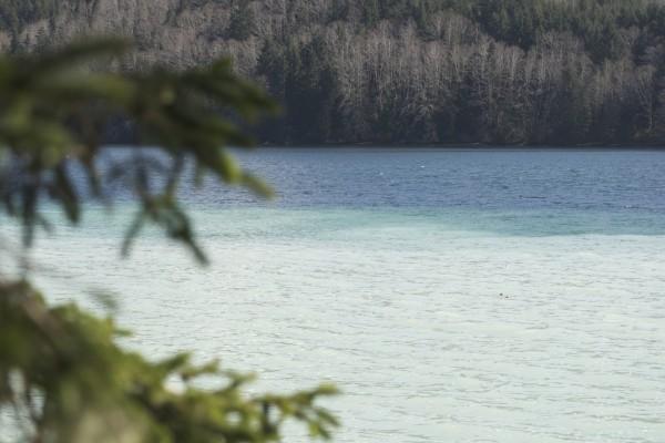 El agua de un lago
