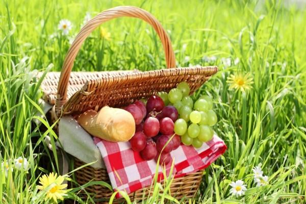 Cesta con pan y uvas sobre la hierba