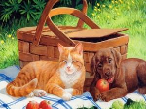 Un gato y un perro junto a una cesta de picnic