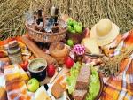 Comida y bebida sobre un mantel para un día de picnic