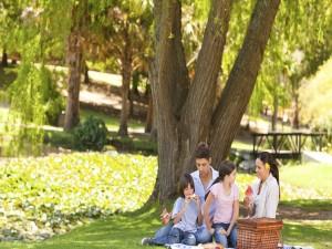 Familia feliz de picnic en el parque