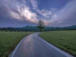 Carretera entre prados verdes