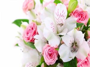 Ramo de flores rosa y blanco