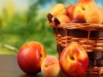 Cesta con frutas de verano