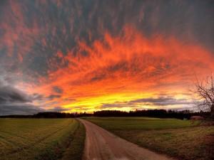 Bonito cielo sobre un camino campestre