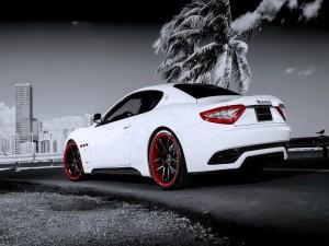 Maserati junto a una palmera