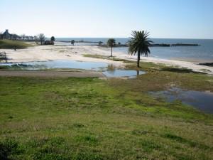 Restos de la antigua playa de Pontchartrain (Lago Pontchartrain, Nueva Orleans)