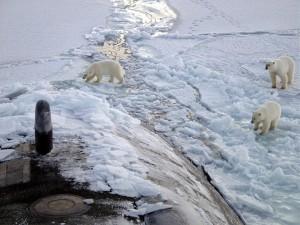 Tres osos polares acercándose a un submarino