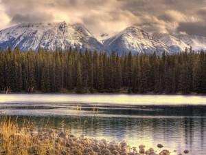 Lago junto a un bosque y montañas nevadas