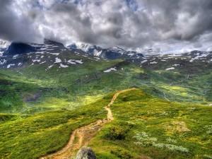 Sendero en las montañas