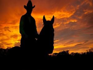 Vaquero sobre su caballo al anochecer