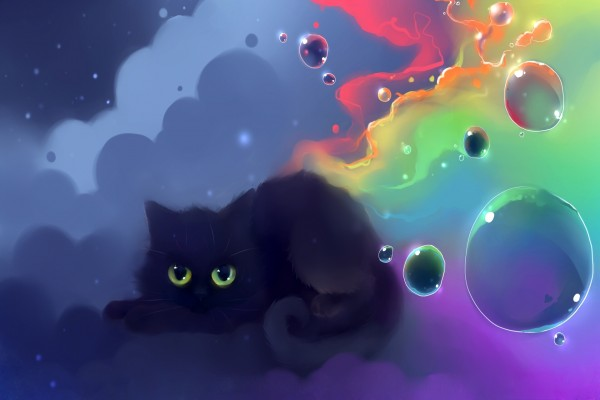Gatito negro rodeado de burbujas