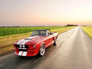 Ford Mustang GT500CR en una carretera
