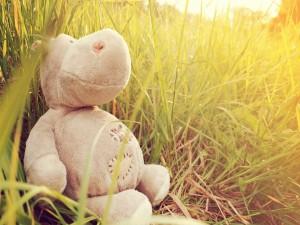Hipopótamo de peluche entre la hierba