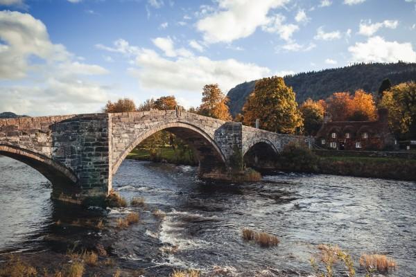 Árboles otoñales junto al puente de piedra