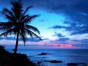 Vista de un bonito amanecer