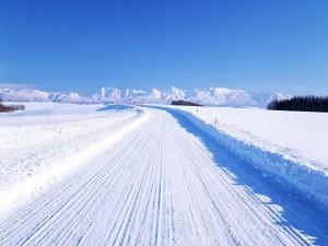 Camino cubierto de nieve