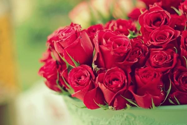 Rosas rojas en un jarrón