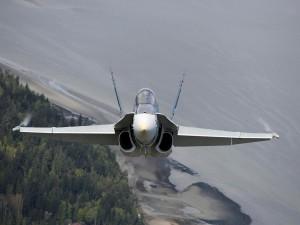Pilotando un McDonnell Douglas CF-18 Hornet