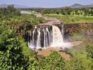Río cayendo en cascada en una zona verde