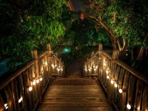 Escaleras de madera iluminadas