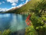 Lago junto a la montaña verde
