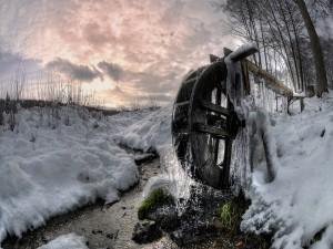 Maravilloso invierno