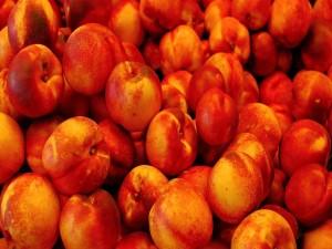 Unas ricas nectarinas