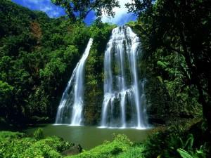 Gran cascada cubierta de vegetación