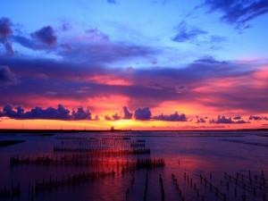 Luz en el horizonte al amanecer