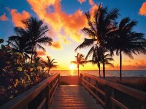 El sol del amanecer iluminando la playa