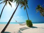 Hamaca en una playa de arena blanca