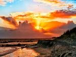 Aves volando sobre la costa al amanecer