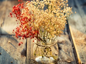 Pequeñas flores en un bote de cristal