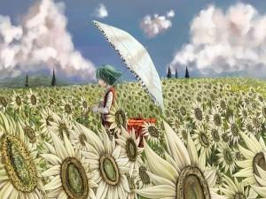 Chica anime con un paraguas caminando en un campo de girasoles