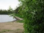 Cerezo en primavera junto a un estanque