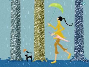 Gato paseando en un día lluvioso