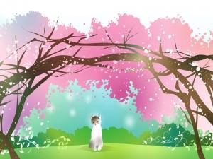 Gatito disfrutando de la primavera