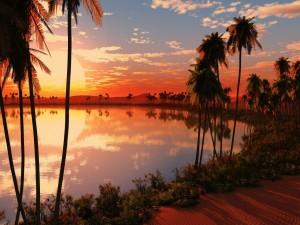 Gran sol reflejado en un oasis del desierto