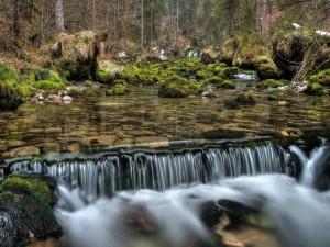 Un bonito río en la naturaleza