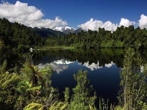 Lago rodeado de naturaleza