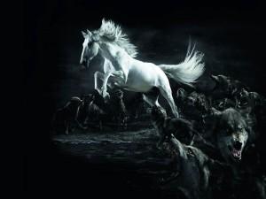 Caballo huyendo de los lobos