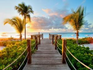 Pasarela de madera hacia una playa