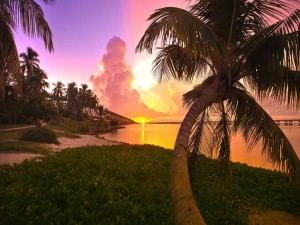 Sol en el horizonte al amanecer