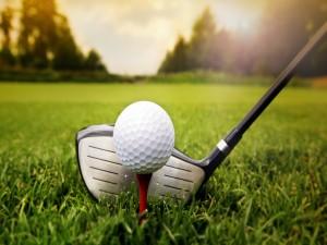 Palo y bola de golf