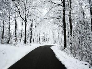 Nieve a ambos lados de una carretera
