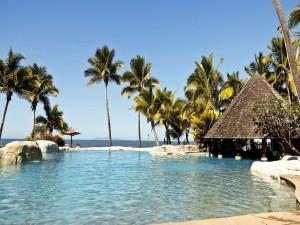 Piscina y palmeras junto al mar