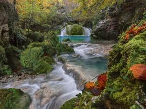 Cascadas en un río