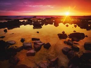 Radiante sol en el horizonte